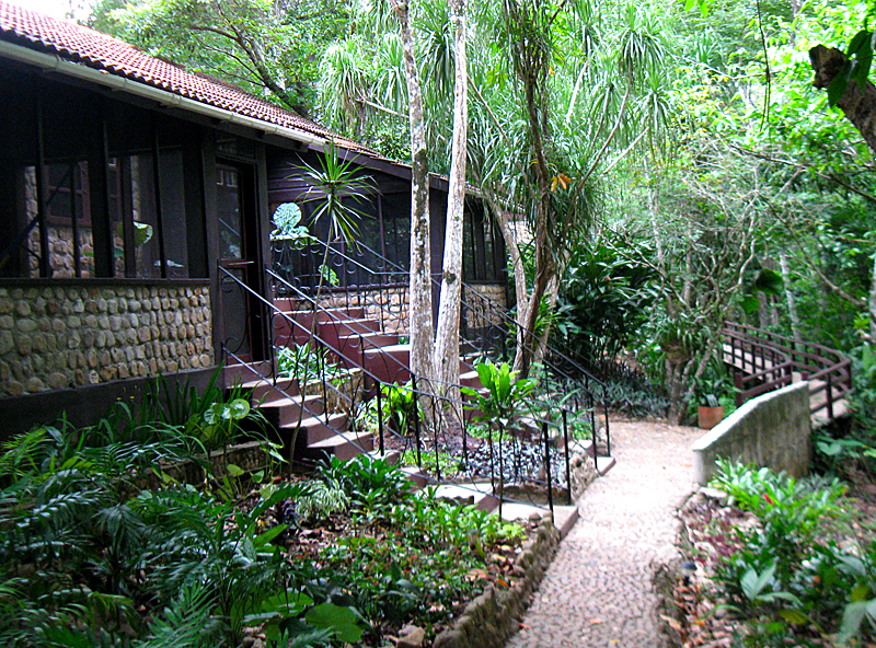 Jungle Lodge Rooms